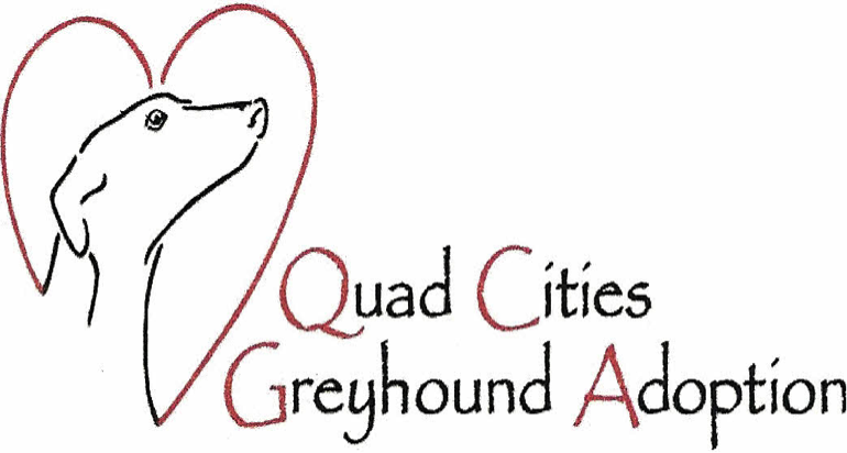 Quad Cities Greyhound Adoption