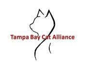 Tampabay Cat Alliance, Inc.