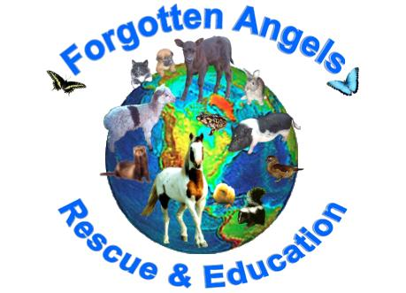 Forgotten Angels Rescue & Education Center Inc.