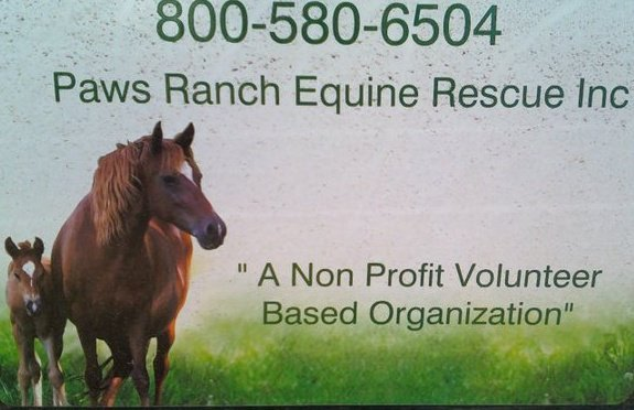 Paws Ranch Equine Rescue