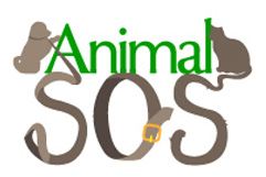 Animal Services and Operations Support